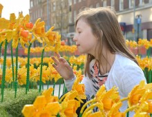LEGO UK Celebrates Spring in Hull – UK City of Culture 2017