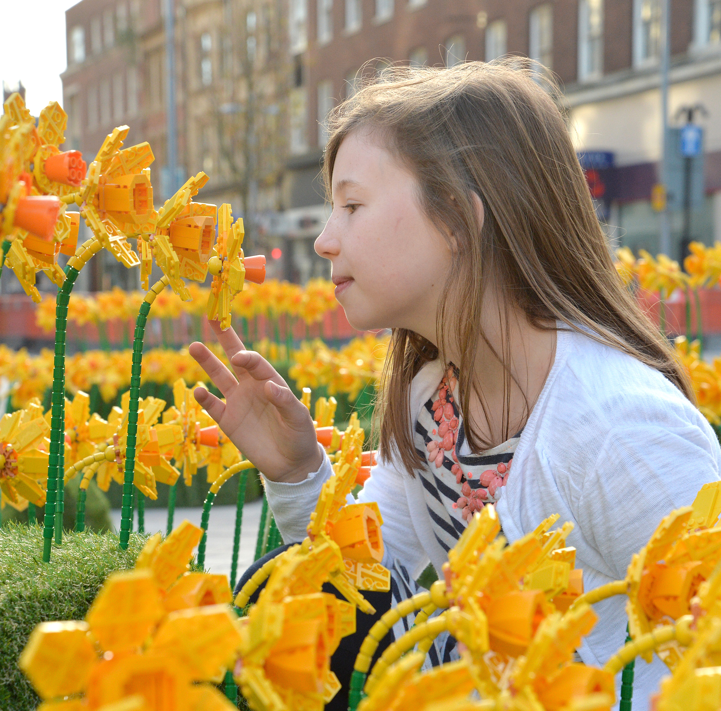 Lego daffodils in Hull, City of Culture 2017